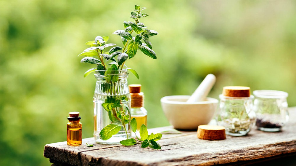 Survival Uses For Peppermint Oil